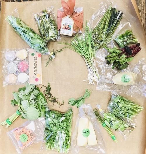正直野菜の宅配便(定期コース月1回)第二週金曜日発送