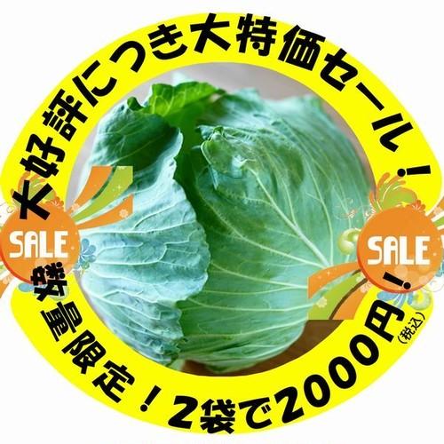 【大好評感謝!大特価セール】「幻のキャベツ419餃子」20個入×2袋【冷凍】