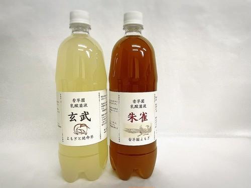蓬延命草乳酸菌液(玄武・朱雀)セット