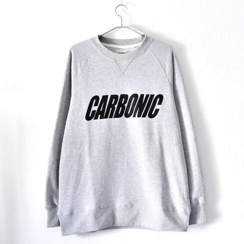 carbonic SLANT logo sweat