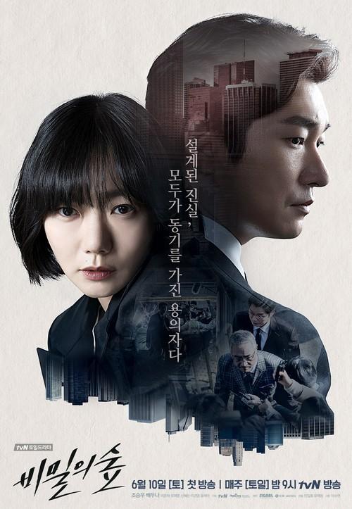 韓国ドラマ【秘密の森】DVD版 全16話