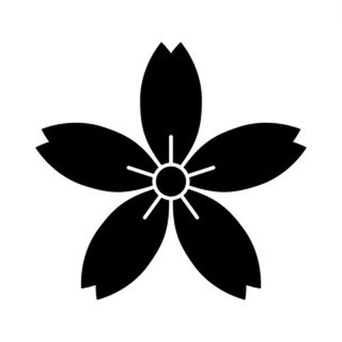 細山桜 高解像度画像セット