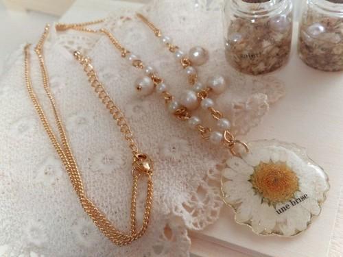ノースポール *necklace*