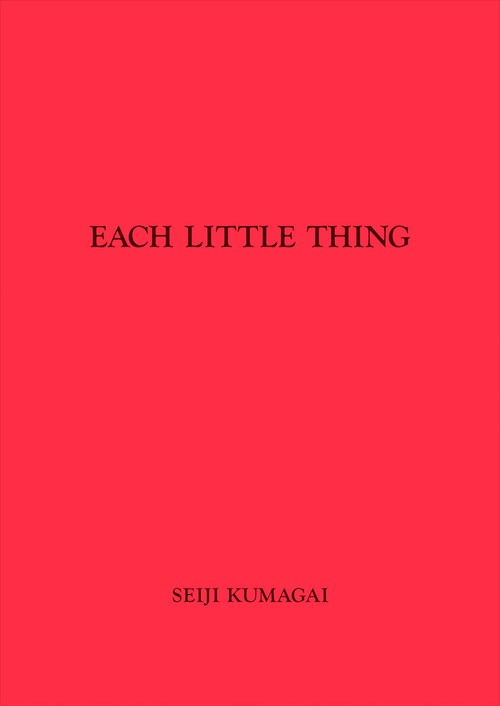EACH LITTLE THING #1