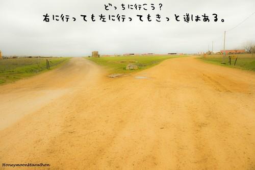 新作☆巡礼ポストカード⑬