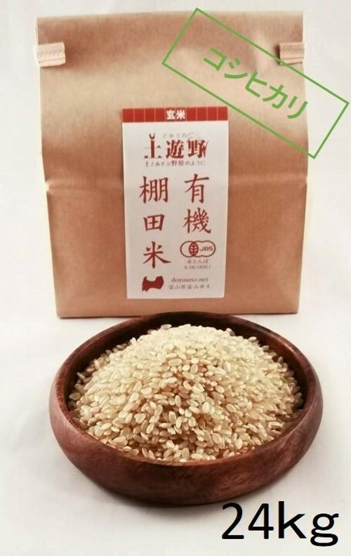 《令和元年産》有機棚田米コシヒカリ 玄米 24㎏