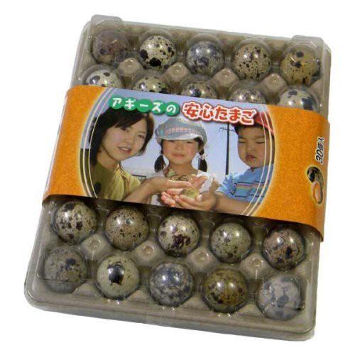 豊橋産 うずらの卵『生命の卵』 30個入り モールドパック