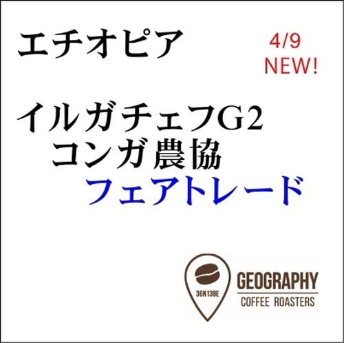 【エチオピア】イルガチェフG2 コンガ農協  フェアトレード 100g