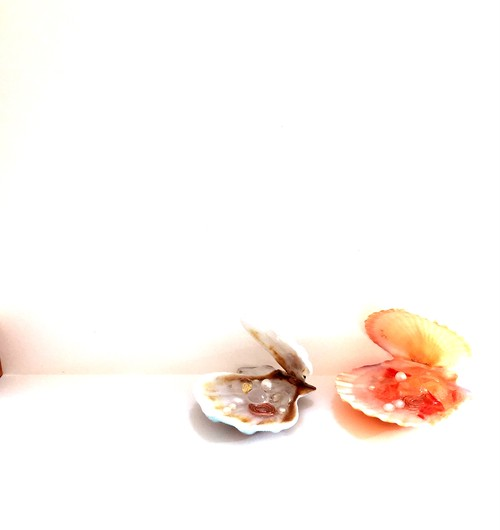 海の贈り物 シェル (オレンジピンク&水色)