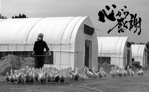 【最高級 山形県大蔵村産】鴨の一羽セットの商品画像8