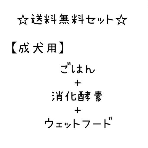 送料無料セット☆生後1年~6歳くらいまで【ごはん+消化酵素+ウェットフード】
