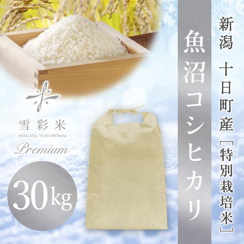【雪彩米Premium】十日町産 特別栽培米 新米 令和2年産 魚沼コシヒカリ 30kg