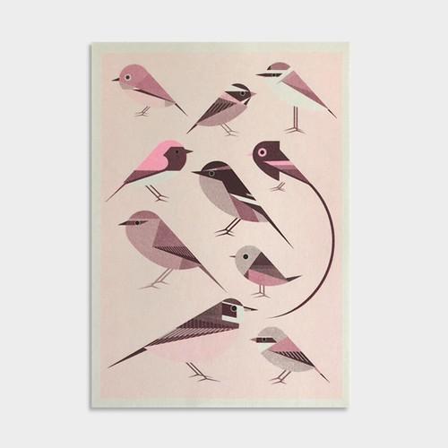 Riso print / PINK - TORI - 47都道府県鳥 NEWS