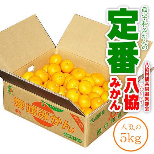 【予約】八協共選「八協みかん ご家庭用 小粒」5kg 2S、Sサイズ