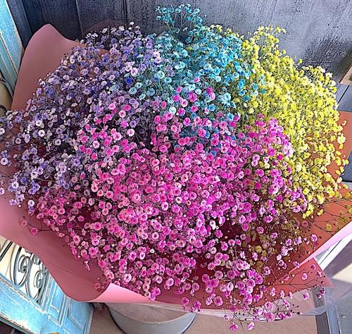 B0549) かすみ草のカラフル花束