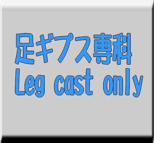 足ギプス専科/Leg cast only Vo-6   500 枚