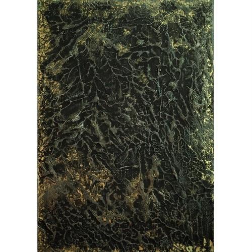 「無題」 キャンバスにアクリル * 絵画 アート作品 現代アート 抽象画 内野隆文 takafumiuchino