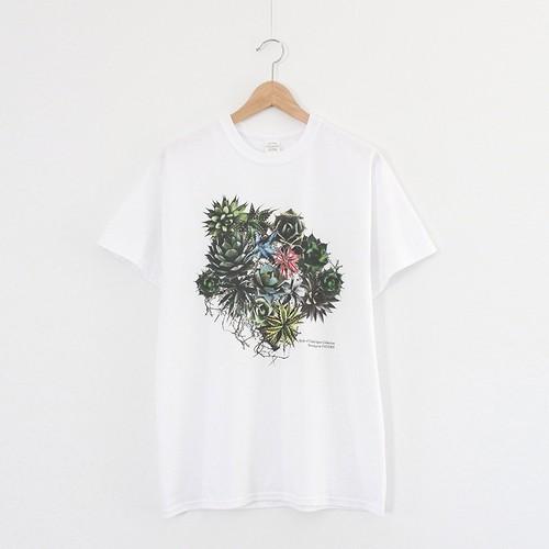 Agave Collection Tee - White < LSD-BTT1 >