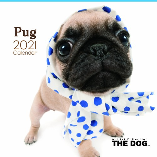 2021年 THE DOGカレンダー【大判サイズ】パグ