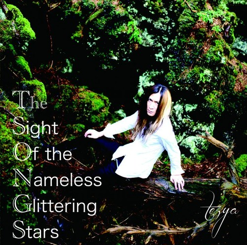 The S.O.N.G.S -The Sight Of the Nameless Glittering Stars- / tezya