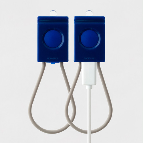 Bookman USB Light Blue