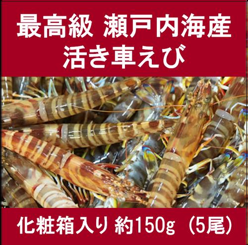 生名車えび (特選)約150g(5尾)