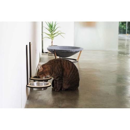 OTAMA catdish