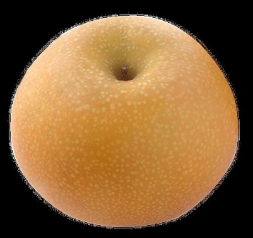 あきづき 5kg(6~7個)