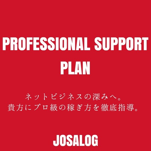 PROFESSIONAL SUPPORT PLAN