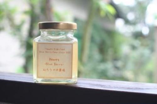 【季節の花の蜂蜜】栗・そよご(170g) 無農薬奈良