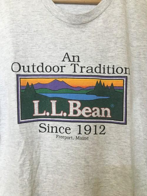 USビンテージ llbean LLビーン シングルステッチ Tシャツ