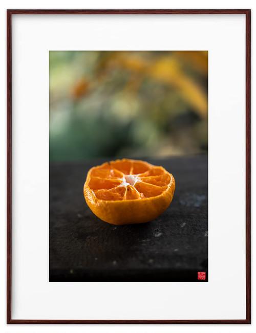 バルコニーのオレンジ(ホワイトボード)A3サイズ