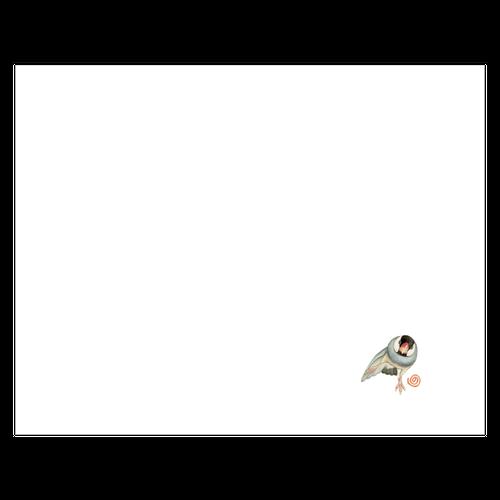 NORISANの小鳥マスク(桜文鳥/ドスコイ)
