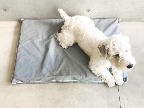 Dog mat & Mat cover/ M(トライアングルM、ベッドM用)