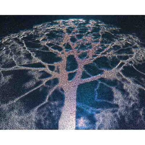 神秘の森・05(イデアの樹02)
