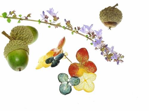 【金泥&草木染】葉脈アジサイの秋色ピアス・14kgf