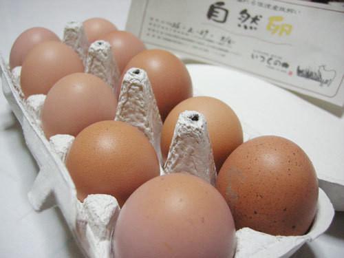 放し飼い自然卵40個パック