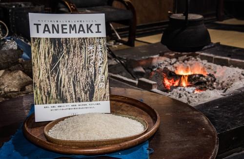 【米3合付き】冊子「TANEMAKI.01―まきどき村の米づくり」