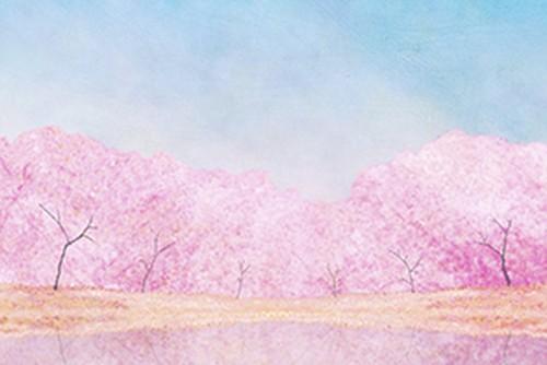 桜と青い空の、画像データ