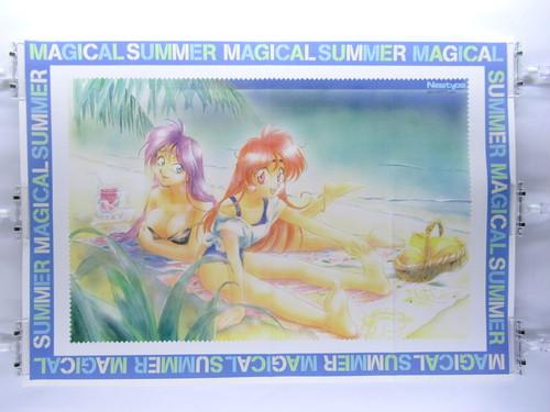Slayers Magical Summer - B2 size Japanese Anime Poster Newtype 1995 September