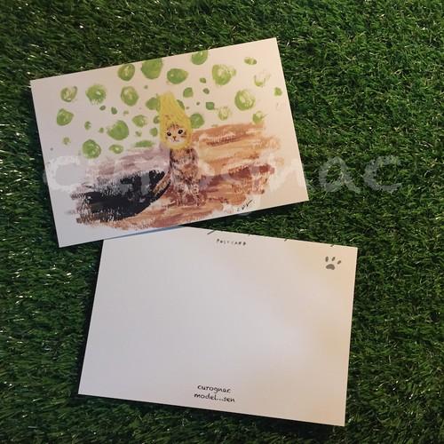 postcard sencat
