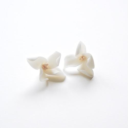 Gardenia Stud