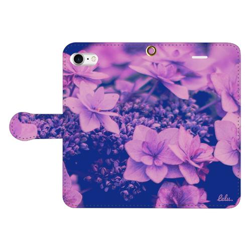 Macrophylla purple