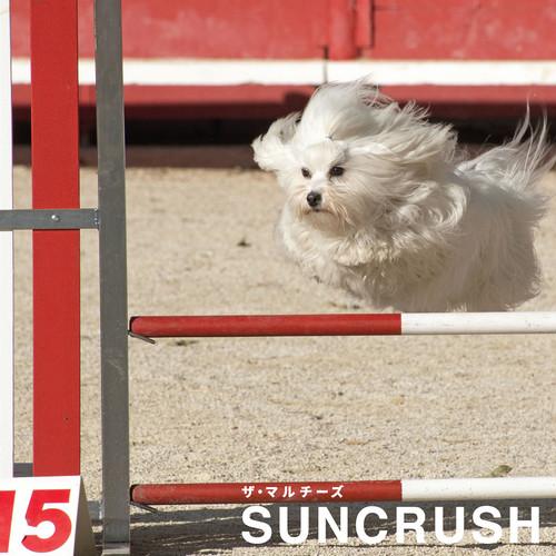 SUNCRUSH (Album)
