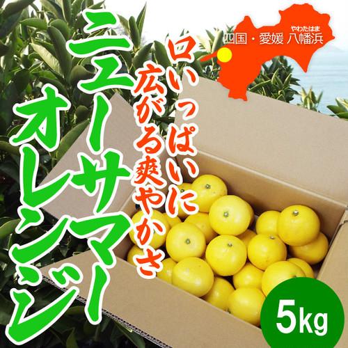口いっぱいに広がる爽やかさ「ニューサマーオレンジ」(愛媛・西宇和産) 5kg入
