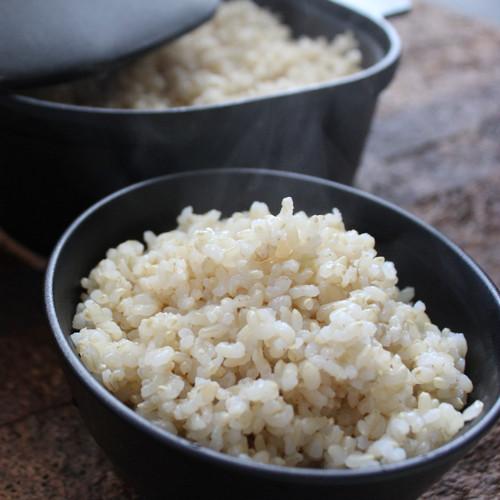 美し米 美山産コシヒカリ 玄米10 kg