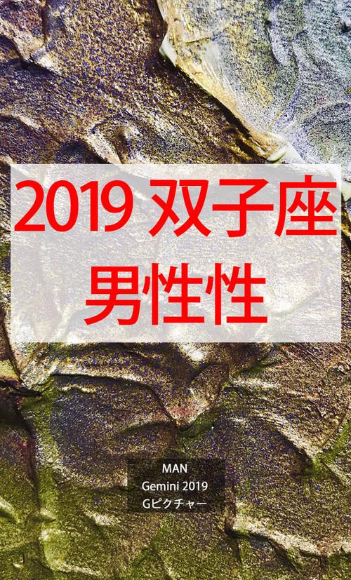 2019 双子座(5/21-6/21)【男性性エネルギー】