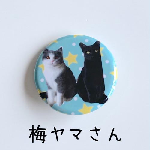 ゆきちゃん愛猫❤️梅ヤマさん缶バッチ★1個