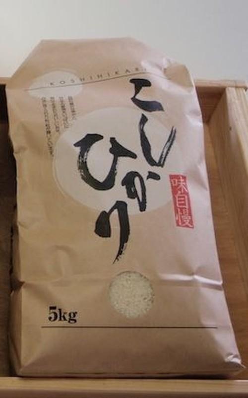平成29年産・会津坂下産コシヒカリ 5kg