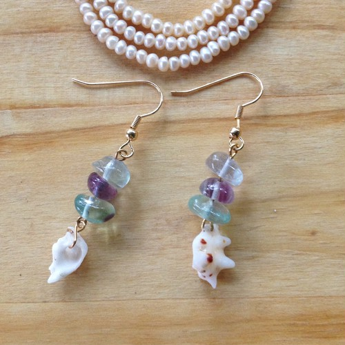 fluorite & Hawaii shell *earings